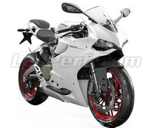 Panigale 899