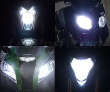 Pack ampoules de phares Xenon Effect pour Buell Buell XB 12 S Lightning