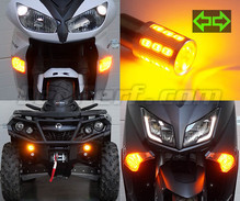 LED-Frontblinker-Pack für Harley-Davidson Road King Custom  1450