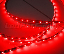 Flexibles 24-V-Band 1 Meter ( 60 LEDs SMD ) rot