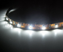 Flexibles 24-V-Band 1 Meter ( 60 LEDs SMD ) Weiß